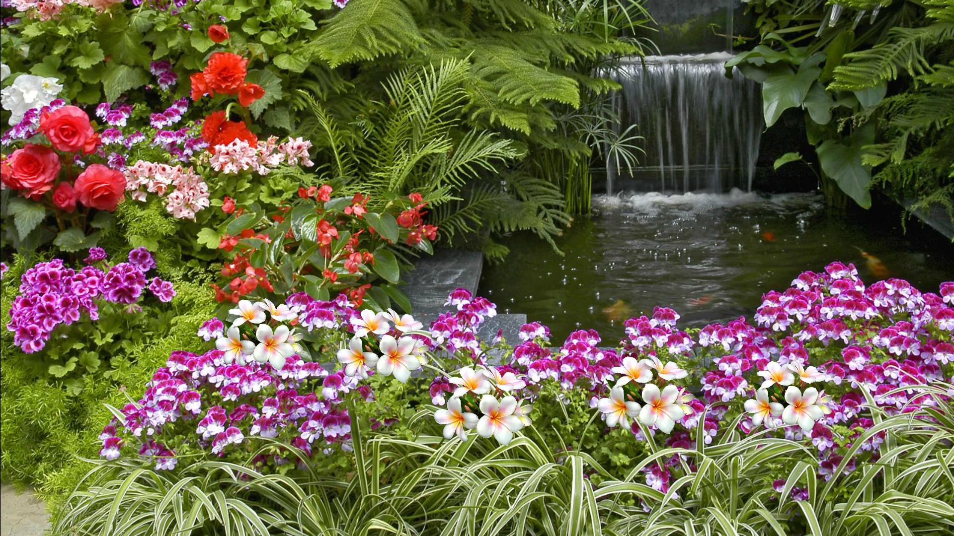 free hd garden wallpaper
