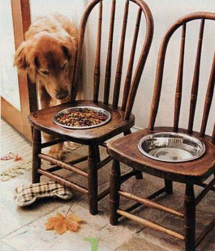 chairs-dog-bowl-chair