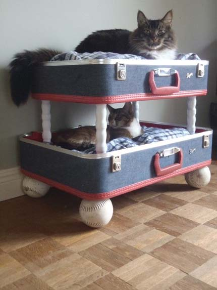 luggage-cat-bed
