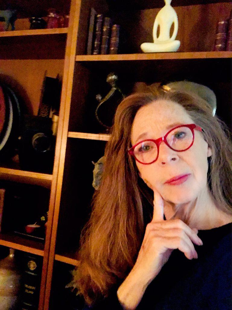 Cyndi Seidler Organizing Lady