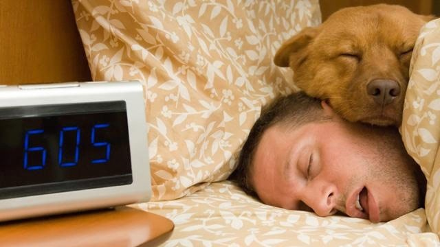 sleeping-in-bed-with-dog